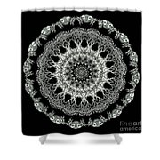 Kaleidoscope Ernst Haeckl Sea Life Series Black And White Set 2 Shower Curtain
