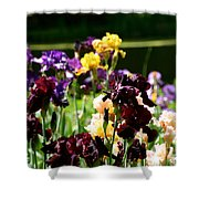 Kaleidoscope Floral Shower Curtain