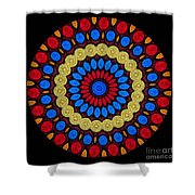 Kaleidoscope Of Colorful Embroidery Shower Curtain