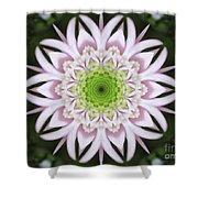 Kaleidoscope Pink Daisy Shower Curtain