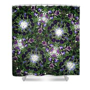Kaleidoscope Violets 2 Shower Curtain