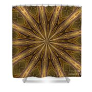 Kaleidoscope With Gold Shower Curtain