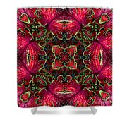 Kaleidscope Made From Image Of Coleus Plant Shower Curtain