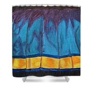 Kanchi Saree Shower Curtain