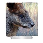 Kangaroo Potrait Shower Curtain