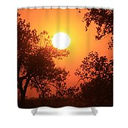 Kansas Golden Sunset With Trees Shower Curtain