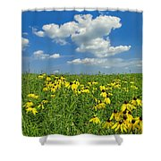 Kansas Prairie Shower Curtain