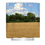 Kansas Wheat Field 3a Shower Curtain