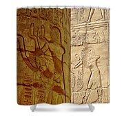 Karnak Temple Detail Shower Curtain