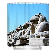 Karnak Temple Statue 14 Shower Curtain