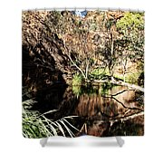 Kathleen Springs Shower Curtain