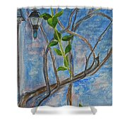 Kathy's Wall And Vine Shower Curtain