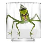 Katydid Suriname Shower Curtain