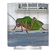 Katydid Shower Curtain