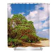 Kauai Beach Shower Curtain