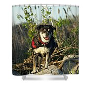Kayaker's Best Friend Shower Curtain by James Peterson