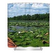 Kayaking Among The Waterlillies Shower Curtain