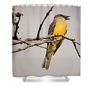 Kb Posing Shower Curtain