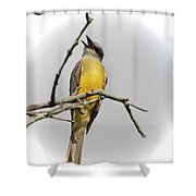 Kb Singing Shower Curtain