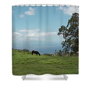 Kealakapu Shower Curtain