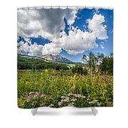Kebler Pass Meadow Shower Curtain