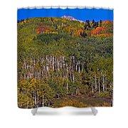 Kebler Pass Panorama Shower Curtain