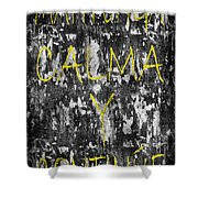 Keep Calm And Carry On Spanish Shower Curtain