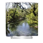 Kelly Springs  Shower Curtain