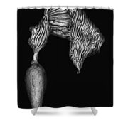 Kelp Pneumatocyst Shower Curtain