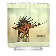 Kentrosaurus Dinosaur Shower Curtain by Bob Orsillo