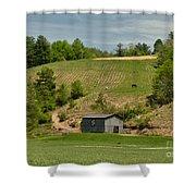 Kentucky Barn Quilt - Americana Star 2 Shower Curtain