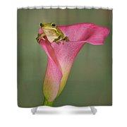 Kermit Peeking Out Shower Curtain