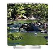 Keuka Seneca Outlet Trail Shower Curtain