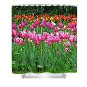 Keukenhof Gardens 14 Shower Curtain