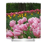 Keukenhof Gardens 17 Shower Curtain