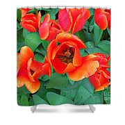 Keukenhof Gardens 2 Shower Curtain