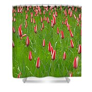 Keukenhof Gardens 25 Shower Curtain