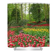 Keukenhof Gardens 53 Shower Curtain