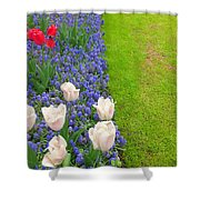 Keukenhof Gardens 55 Shower Curtain