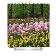 Keukenhof Gardens Panoramic 15 Shower Curtain