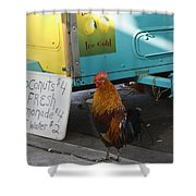 Key West - Rooster Making A Living Shower Curtain
