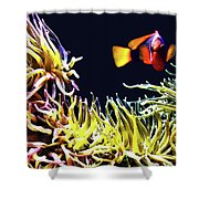 Key West Fish Shower Curtain
