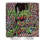 Key West Garden Club Pots Shower Curtain
