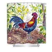 Key West Proud Shower Curtain