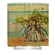 Keys Mangrove Shower Curtain