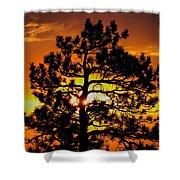 Keystone Pine Shower Curtain