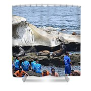 Kids And Sea Lions Shower Curtain