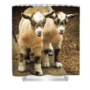 Kids One And Two Shower Curtain