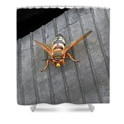 Killer 1 Shower Curtain
