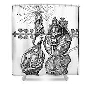 King Arthur, 1903 Shower Curtain